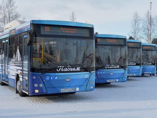 В Надыме увеличат количество экологичных автобусов