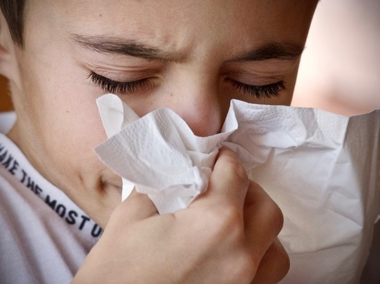 В Германии почти на месяц раньше начался сезон аллергии