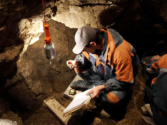 В Денисовой пещере на Алтае нашли 300-тысячелетний череп