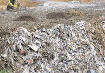 Общероссийский народный фронт (ОНФ) презентовал народный доклад о ходе реализации мусорной реформы