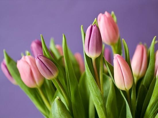 6 неочевидных подарков на 8 Марта