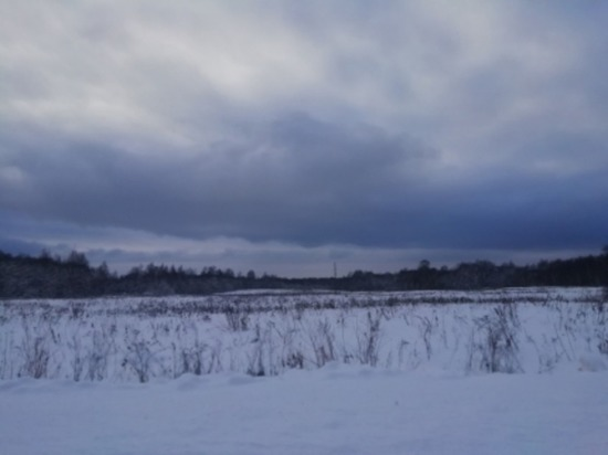 В Смоленской области сегодня ветрено, возможна метель