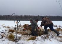 Поисковики рассказали, как в Тверской области поднимали из болота самолёт