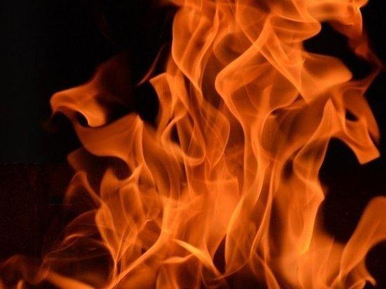 Легковая Skoda загорелась в одном из дворов Ноябрьска