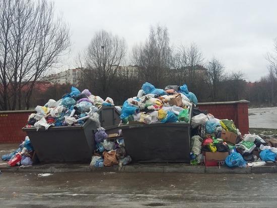 В Калининграде работники ЖЭУ выгрузили микроавтобус мусора у контейнеров для населения