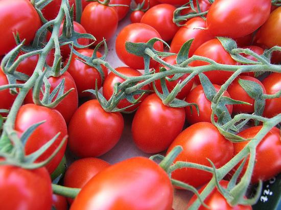 В Ноябрьске продукты с ГМО будут выявлять на специальном аппарате