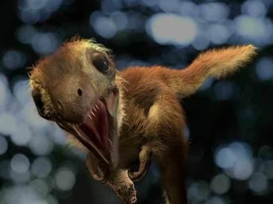 Восстановлен подлинный облик тираннозавров: были пушистыми милашками