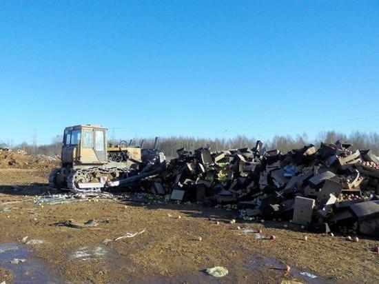 Смоленские таможенники уничтожили более 30 тонн санкционки