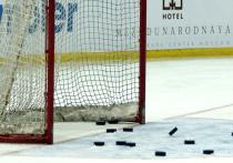Очередной сезон Континентальной хоккейной лиги (КХЛ) подобрался к самому интересному – плей-офф: 16 лучших команд отправились в путь за Кубком Гагарина