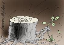 Правительство Иркутской области превращает тайгу в сплошную лесосеку