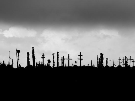У Новоульяновска прокуратура обнаружила три неоформленных кладбища