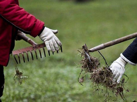 В Саранске готовятся к полезным весенним акциям