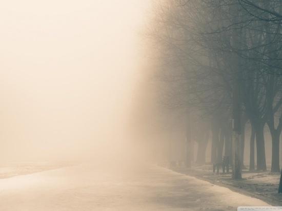 Предстоящая неделя в Ульяновской области будет теплой и дождливой