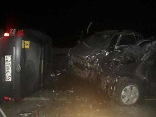 Пожилой житель Новосибирской области погиб в ночной автокатастрофе