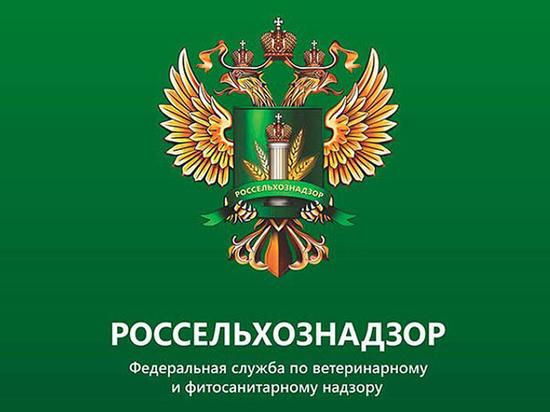 Противооэпизоотическая ситуация в Ивановской области
