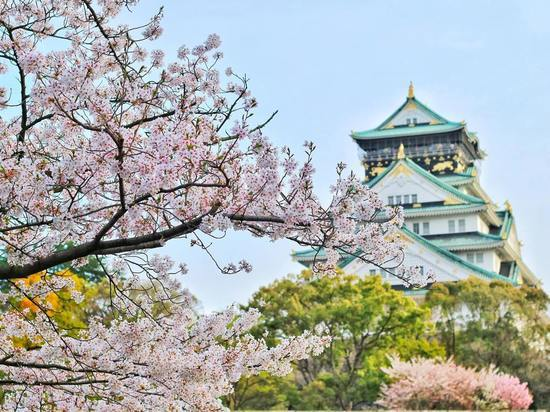 Год Японии в России: Фудзи становится ближе