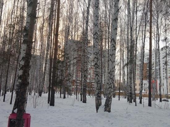 Глава Екатеринбурга поддержал заявления жителей о некорректном поведении «Атомстройкоплекса» в Академическом