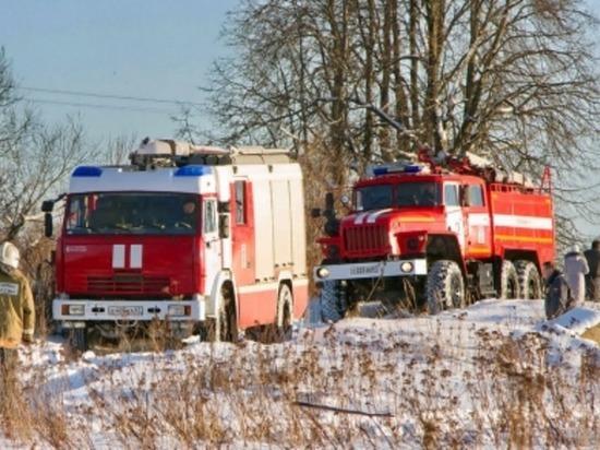 11 поросят, восемь коз и теленка спасли из огня смоленские пожарные