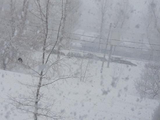 Из-за 10-дневной нормы снега в Ульяновске отменили празднование Дня ЖКХ