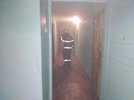 Армия пожарных спасала людей из горящей тульской квартиры