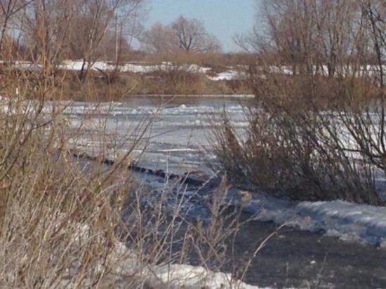В Ульяновской области ограничат движение грузовиков из-за таяния снега