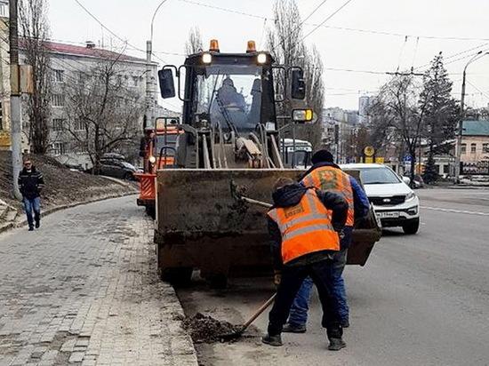 В Воронеже прошел весенний санитарный день