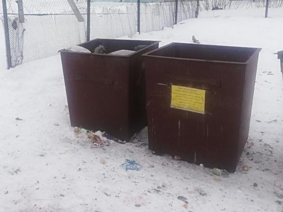 Ульяновцы украли 4 мусорных бака