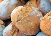 Производство хлеба в России возьмут под контроль, а самих пекарей заставят получить корочки о специальном образовании