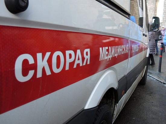 В московской квартире нашли разложившиеся трупы матери и сына