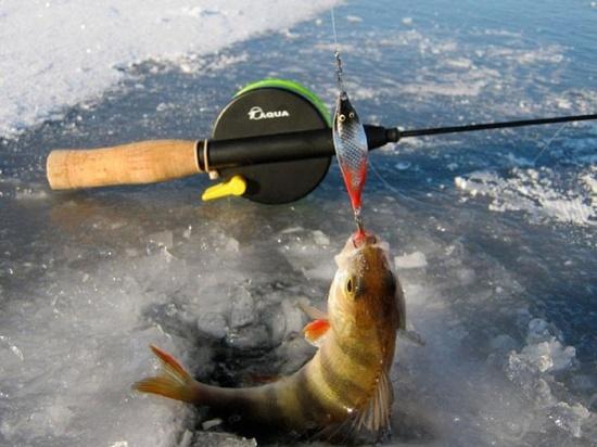 В Тамбовской области выберут лучшего рыбака