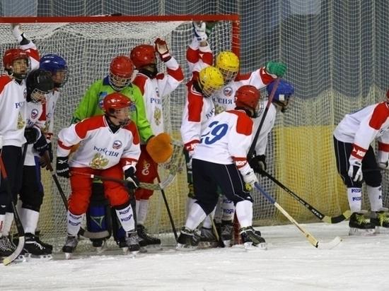 Ульяновские хоккеисты выступят на Первенстве мира в составе сборной России