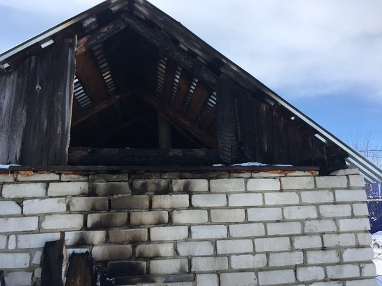 В Ульяновской области собака заметила пожар и позвала хозяев