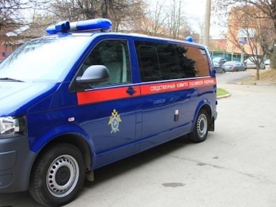 В Тульской области раскрыто циничное убийство