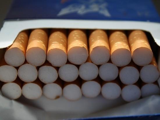 Мурманский суд наказал гражданина Грузии за контрабанду сигарет