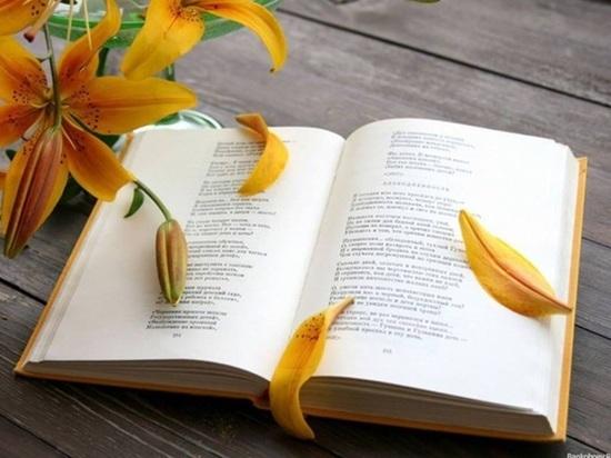 Саранск присоединиться к фестивалю «Всемирный день поэзии»