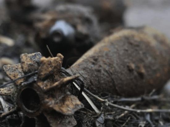 В Калининградской области обезвредили 27 боеприпасов