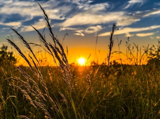 «Дальневосточный гектар»: что делать Забайкалью после «взрыва» производства
