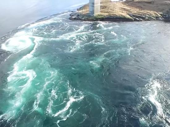 Ученый рассказал о «засасывающем все живое» разломе в Азовском море