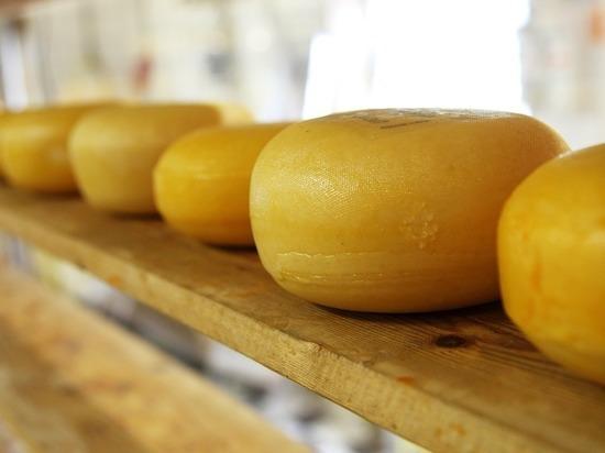 Назван музыкальный жанр, делающий сыр вкуснее