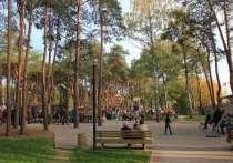 Воронежские школьники проведут выпускной в парке «Алые паруса»