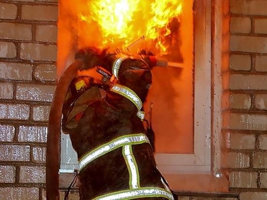 На пожаре в Мордовии погибла 84-летняя пенсионерка