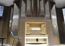 Большинство российских органных залов не соответствуют нормам качества звучания инструмента, из-за чего акустика на концертах получается очень «сухой»