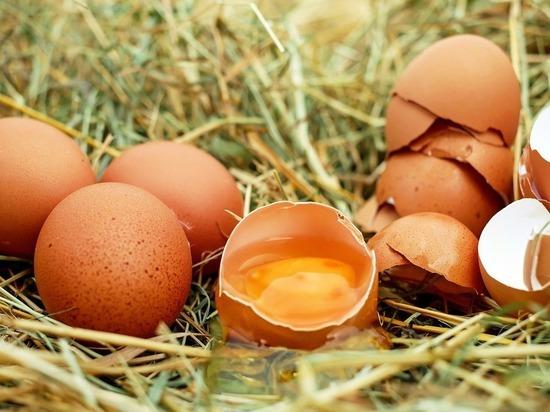 Российские ученые реабилитировали яйца: смертность не повышают
