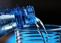 В Медвежьегорском районе планируют организовать производство бутилированной артезианской воды