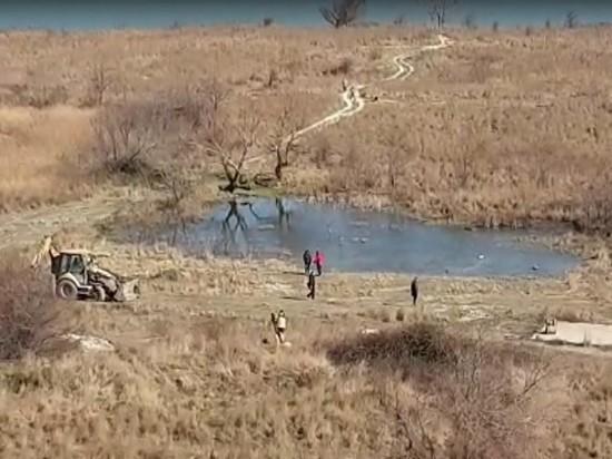 Новороссийские экологи бьют тревогу по поводу растений в Суджукской долине