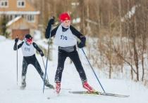 Быстрее, выше и… прозрачнее: в Тверской области делают ставку на массовый спорт