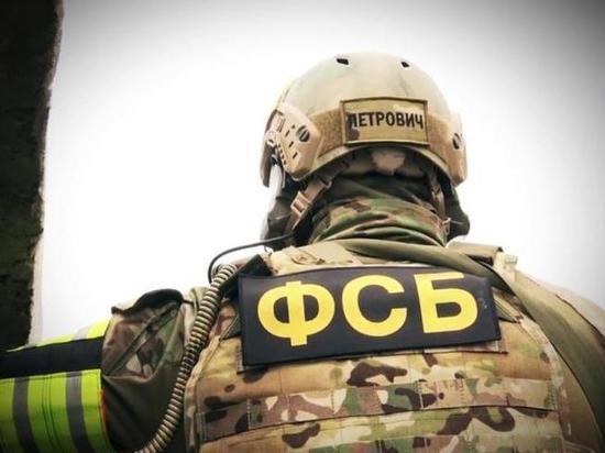 Группа из Томска, Кемерово и Краснодара украла более 15 миллионов рублей из маткапитала