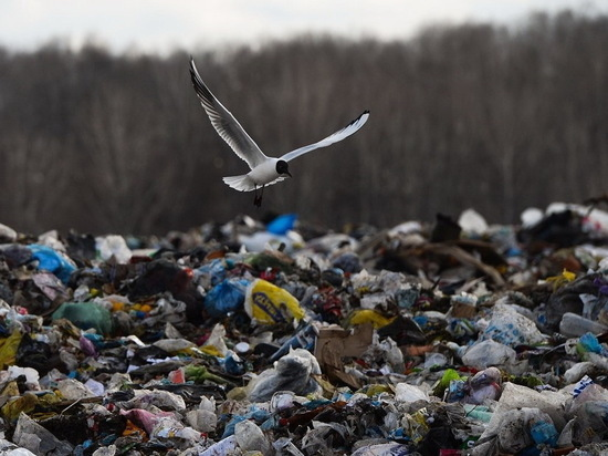 В Бурятии не все районы готовы к складированию мусора
