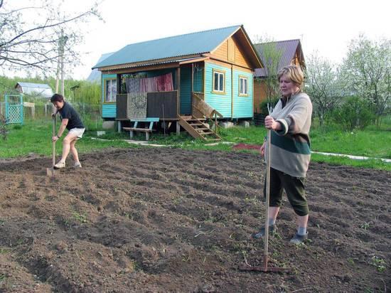 Специалисты назвали дачникам срок начала огородных работ в этом году