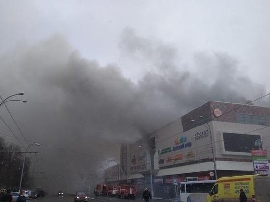 В МЧС заступились за пожарных, тушивших «Зимнюю вишню»